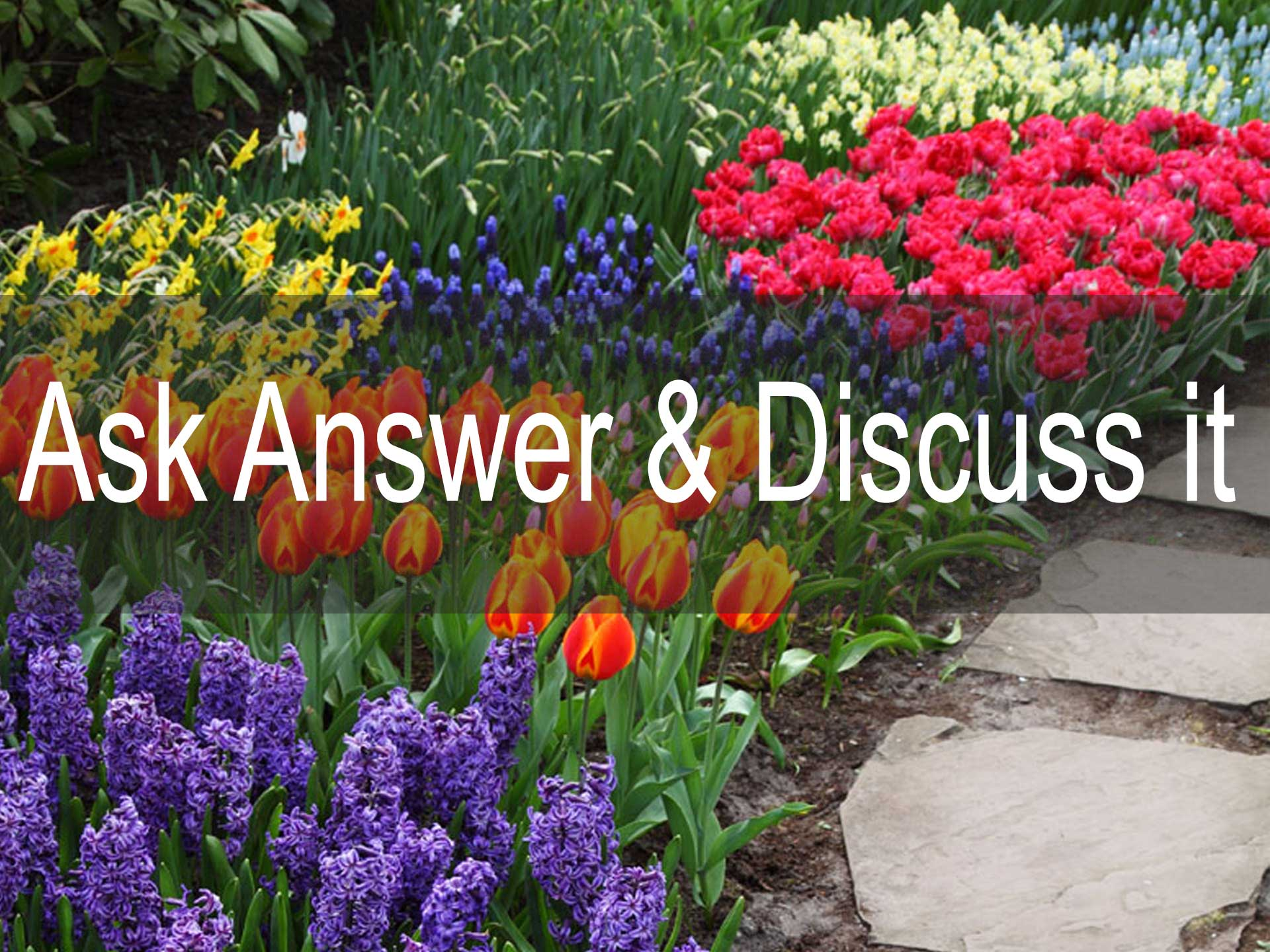 Ask Answer & Discuss it on Australian Gardeners Forum FREE Classifieds
